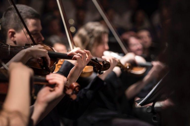 Royal Northern Sinfonia   Portfolio   Hush Digital